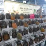 pineapple market, Azores